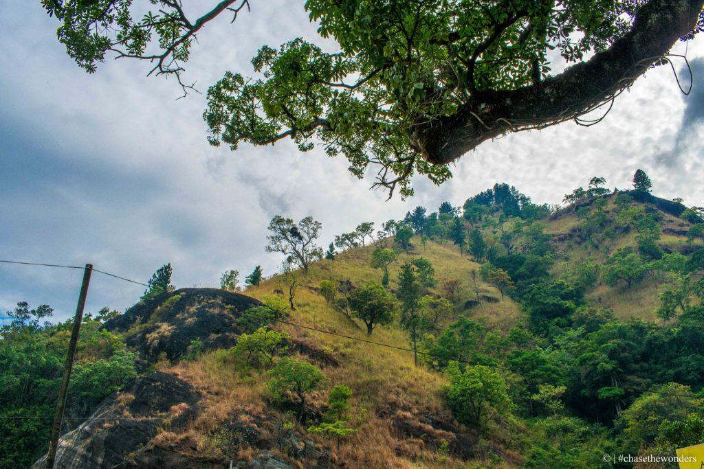 Road to Bambarakanda Falls 1