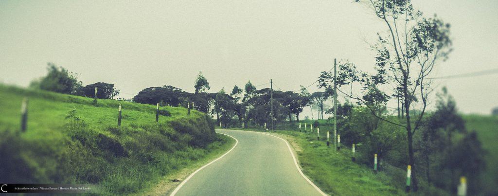 Towards Horton Plains