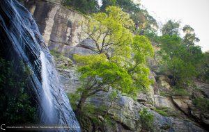 Kolapathana Ella Waterfall