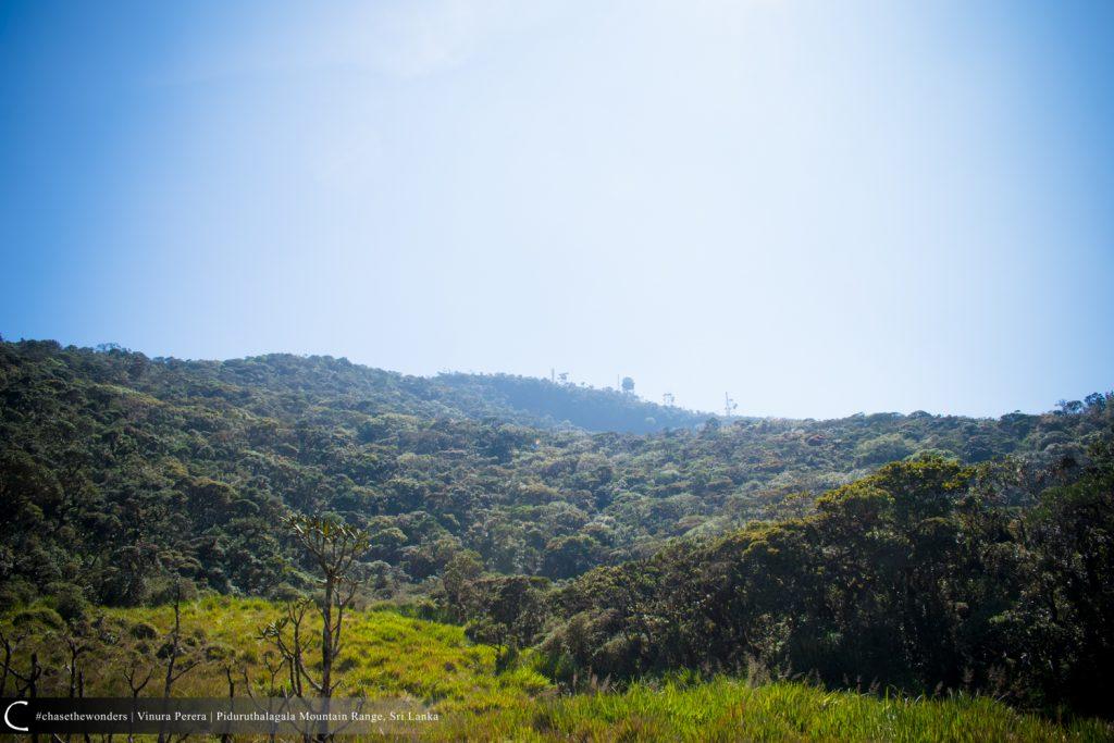 "View of Piduruthalagala Transmission Tower from the ""Lunukola Pathana"""