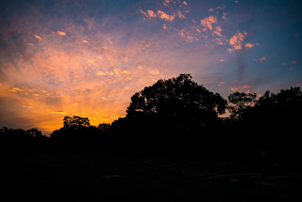 Mornings - Yala National Park - Pada Yatra