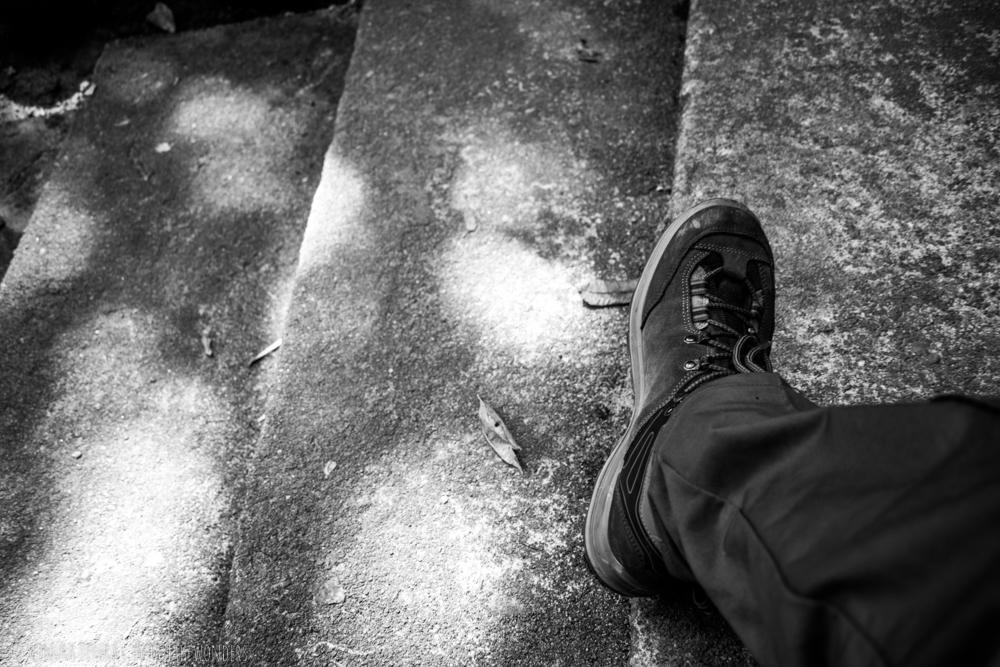 Trek 100 Men's Trekking Shoes